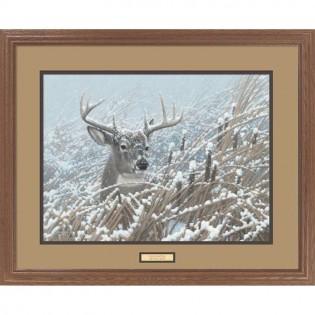 Cattail Whitetail Deer Print