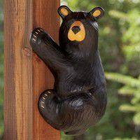 Climber Bear Grand