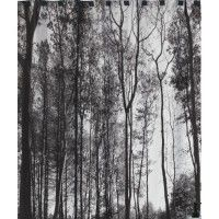 Forest Silhouette Shower Curtain