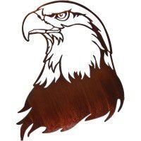 Bald Eagle Portrait Metal Wall Art