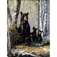Berry Patch - Bear Wrapped Canvas