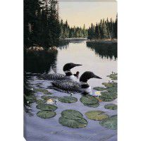 Enchanted Passage - Loon Wrapped Canvas