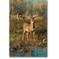 Deer at First Light Wall Art
