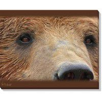 Bear Eyes Wrapped Canvas Art