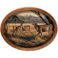 Abandoned Farmstead Whitetail Framed Oval Canvas