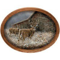 Chance Encounter Deer Framed Oval Canvas