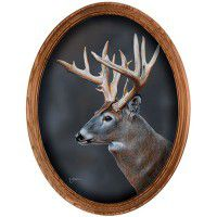 Whitetail Deer Portrait Framed Oval Canvas