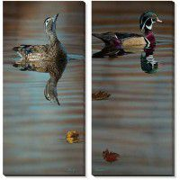 Autumn Woodies – Wood Ducks Wrapped Canvas Duo
