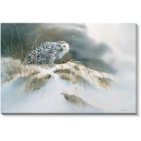 Snow Queen - Snowy Owl Wrapped Canvas Art