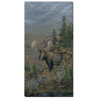 Big Country - Moose Wrapped Canvas Art